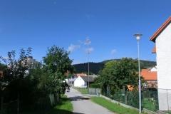 brloh2011166